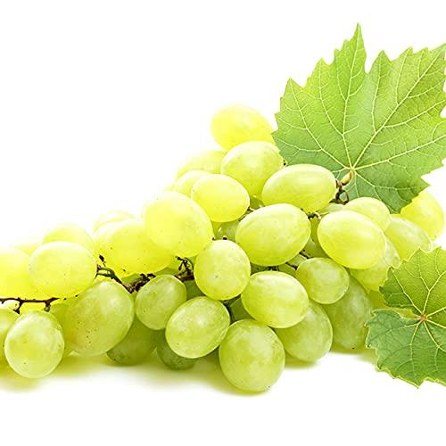 山形県産 ブドウ シャインマスカット 1.5kg(秀品/2房-3房)