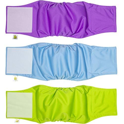 PET MAGASIN Hundewindeln für männliche Hunde, 3er-Pack, Blau, Grün und Violett, Größe S