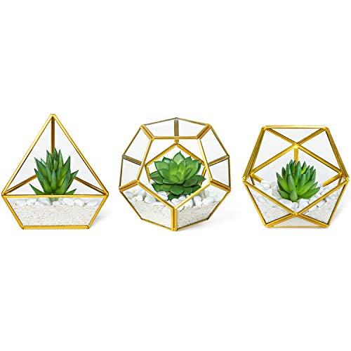 Mkono Artificial Succulent in 3 Pack Mini Glass Geometric Terrarium, Miniature Potted Faux Plant Bookshelf Desk Boho Office Room Decor for Women Girls Dorm Gift Idea, Gold