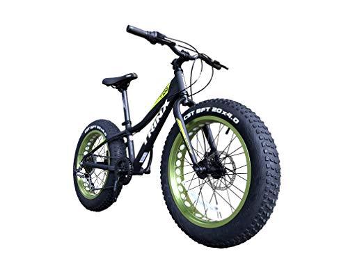 TRINX(トリンクス)『ファットバイクT100』