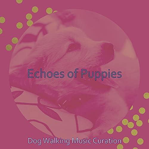 Dog Walking Music Curation