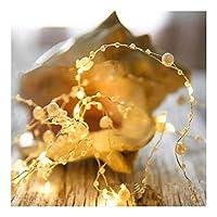 クリスマスの飾り クリスマスライトは、10メートルのガーデンパーティー、休日の装飾に適しのために妖精パールLEDライト、バッテリ駆動ガーランドストリングライトを100LED パーティーや室内装飾に最適 (Color : Warm White, Size : 2M 20LEDs)