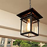 Chao Zan - Lámpara de techo colgante impermeable IP55, resistente al agua, lámpara colgante rústica de metal para balcón, para porche, exterior, Entryway, E27, color negro
