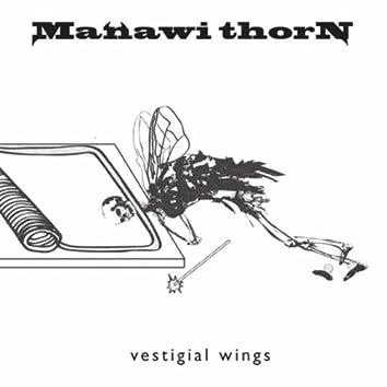 Vestigial Wings