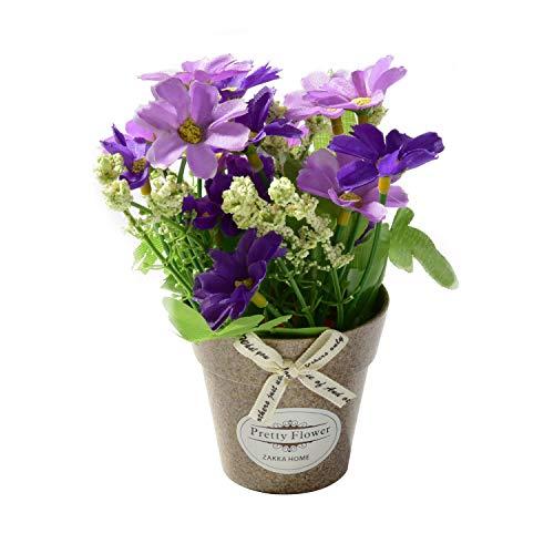 rui tai, Phalaenopsis pvc bright small wild flower plant simulation flower small bonsai purple