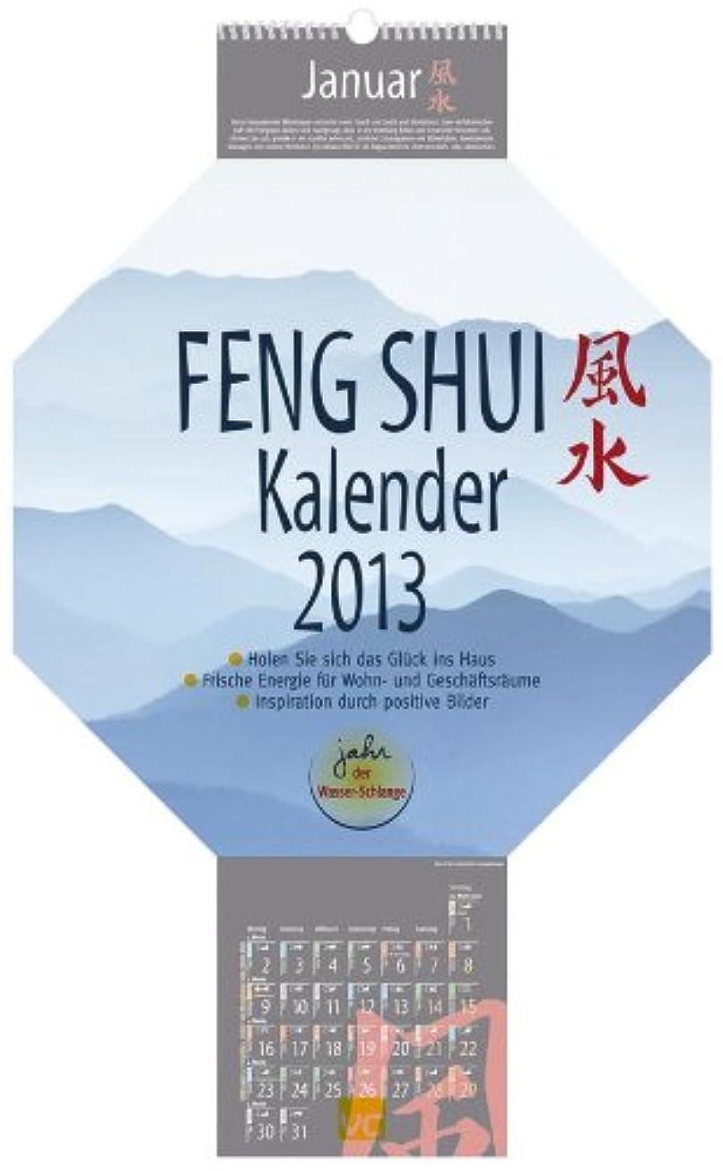 人類忌み嫌う対抗Feng-Shui-Kalender  2013: Das Original mit Mondphasen und Achteck-Format