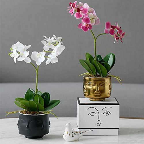 4 inch White Ceramic Succulent Cactus Pots Vase, Item Holder,Cute Face Head Planter for Decor Flower, White