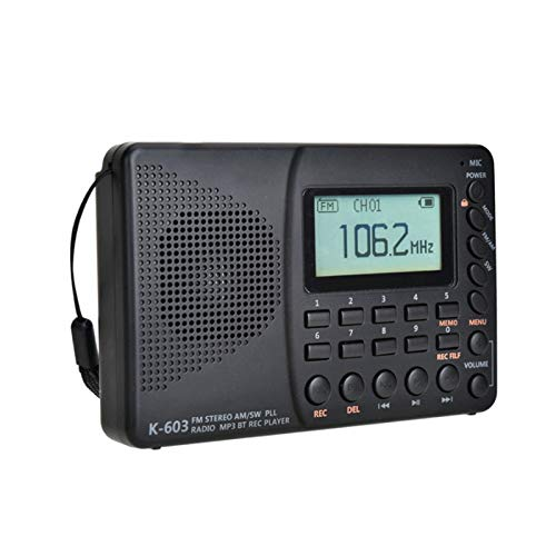 Bdesign AM FM Portable Radio with Loudspeaker and Headphone Socket, Good Reception Pocket Radio with Clear Excellent Sound, Battery Operated,TF Card,Chargeable