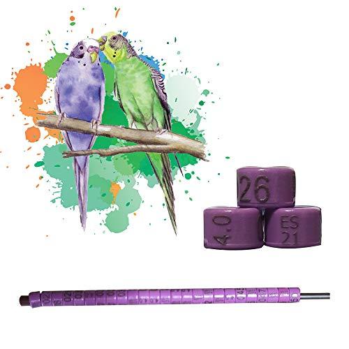 nestQ Anillas Periquitos 2021 Color Violeta Federativo Policromo Grabado Laser Cerradas 4.0 Milimetros Numeradas con Año Marcado 1 Tira con 25 Anillas