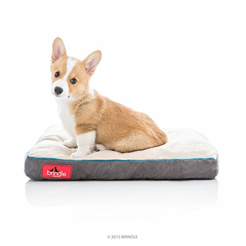 Brindle Soft Shredded Memory Foam Dog Bed with Removable Washable Cover - 22in x 16in - Khaki