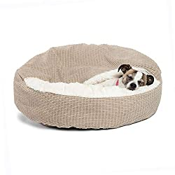 Dachshund Beds 1