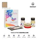DrawndPaint for/Renault Laguna Nevada/Jaune Manille Met - A17 / Touch-UP Sistema DE Pintura Coincidencia EXACTA/Essential Care