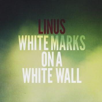 WHITE MARKS ON A WHITE WALL