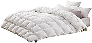 February Snow Summer Lightweight Goose Down&Feather Comforter Blanket Hypoallergenic,Solid White (100x90inch(254x229cm))