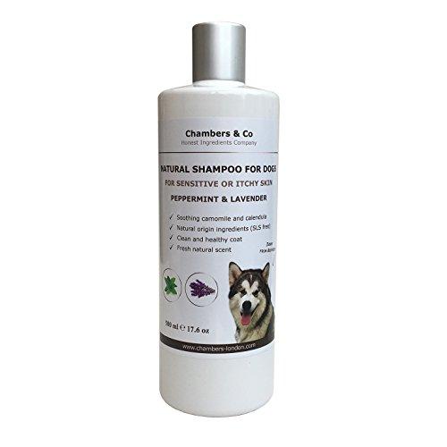 Menthe Poivrée et Lavande Shampoing naturel pour chien