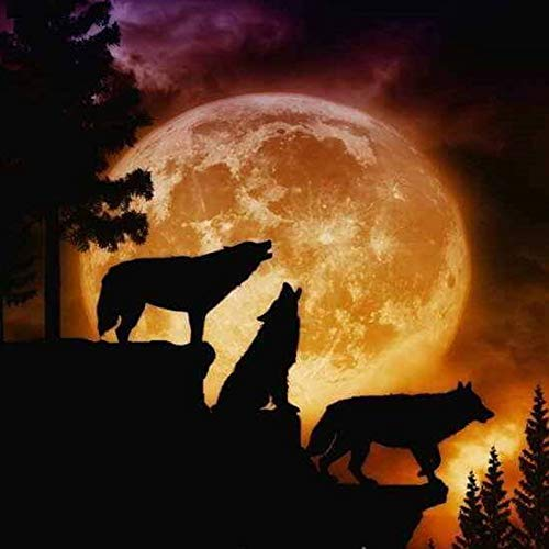 Diy Oil Painting, Paint By Number Kits -Wolf Silhouette,16X20 Inch