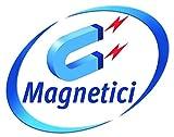 Avery J8871-5 Cartelli Bianchi Magnetici, 18 Cartelli per Foglio, 5 Fogli, 78 x 28...
