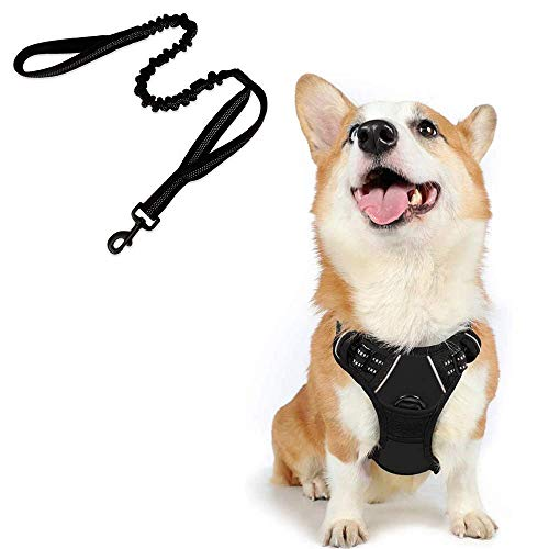 rabbitgoo Dog Harness No-Pull Pet Harness with Bungee Tactical Dog Leash, Adjustable Outdoor Pet Vest 3M Reflective Oxford Material Vest for Dogs Easy Control (Black, Medium)