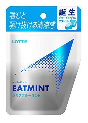 ロッテ EATMINT 18g ×10個