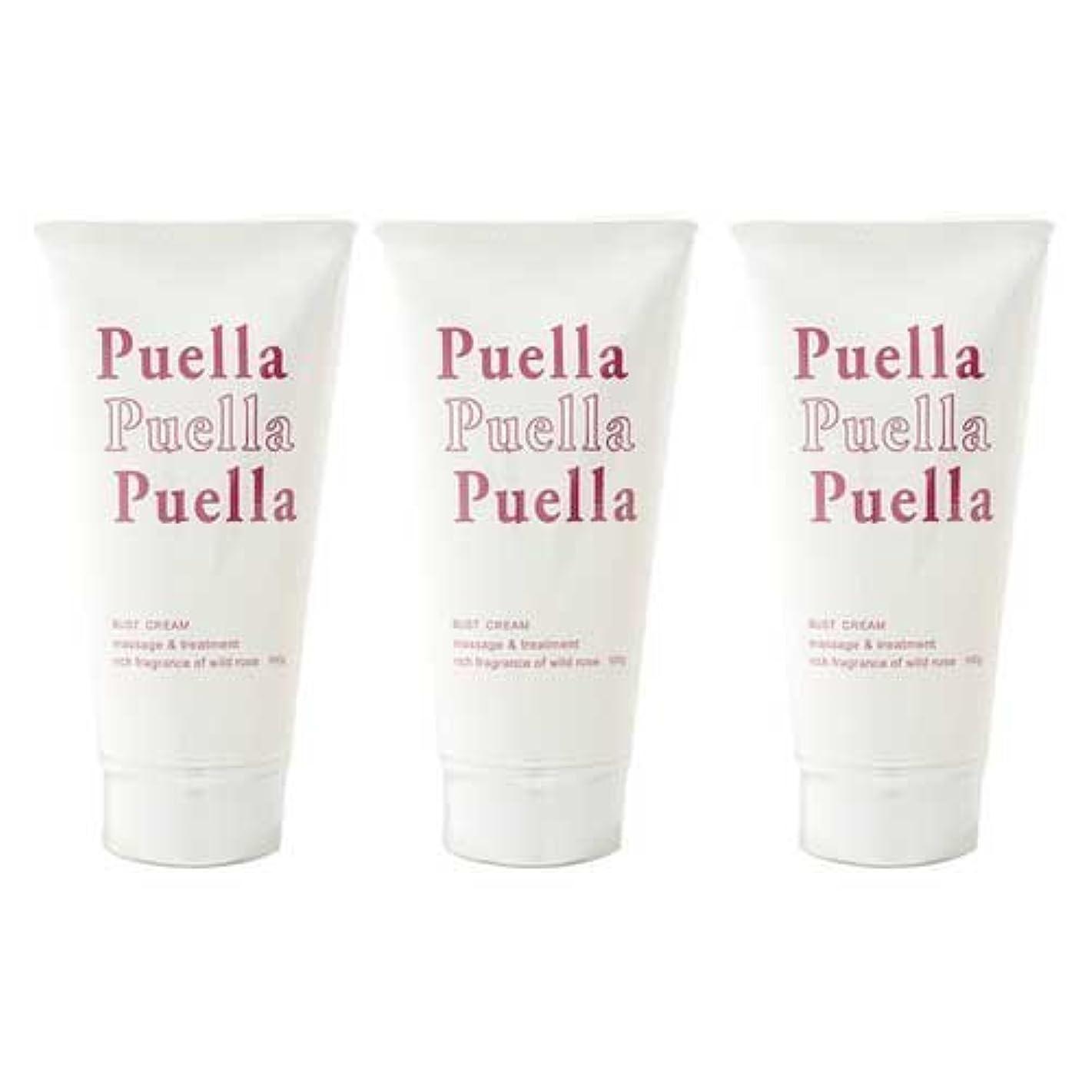 クッション本当のことを言うとアベニュー3個セット puella(プエルラ)