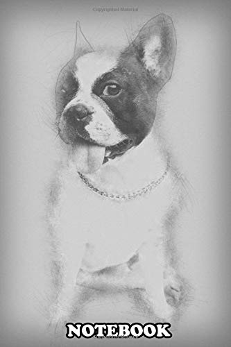 Notebook: Beautiful Black And White French Bulldog Female Dog Iso , Journal for Writing, College Ruled Size 6' x 9', 110 Pages