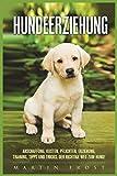 Hundeerziehung: Anschaffung, Kosten, Pflichten, Erziehung, Training, Tipps und Tricks. Der richtige Weg zum Hund!