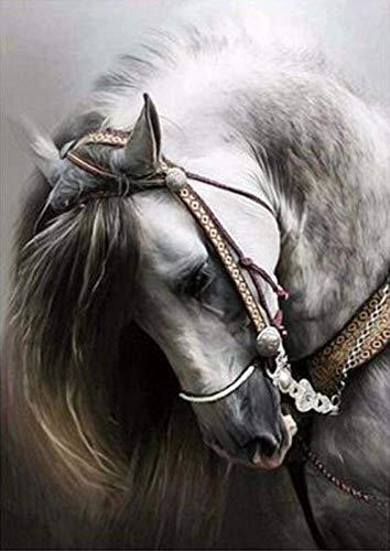 JJDSN Dybjq 5D Pintura de Diamantes Dibujo de Cabeza de Caballo Bordado de Diamantes Punto de Cruz Mosaico Imagen de Diamantes de imitación sin Marco 40x50cm