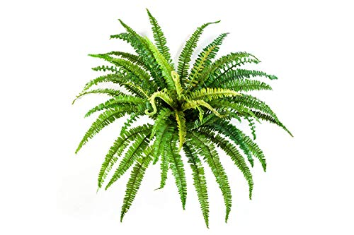 Helecho Artificial Lean con 57 Hojas largas, Verde, Ø 70cm, 55cm - Planta Textil/decoración - artplants
