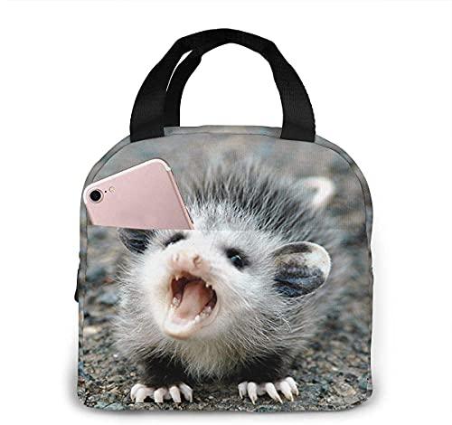 Cute Baby Possum Bolsa de almuerzo aislada portátil Bolsa de almuerzo Bolsa de asas Bolsa de almacenamiento de almuerzo Bolsa de asas pequeña