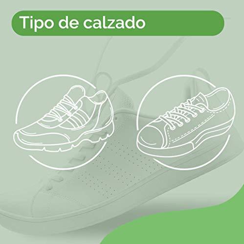 Scholl Plantillas Gel Activ Sport para mujer, para zapatillas deportivas, mayor amortiguación y absorción del olor y sudor, talla 35.5 - 40.5, 1 par (2 plantillas) (3032212)