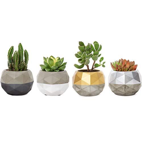 Mkono Mini Cement Succulent Pots Concrete Succulent Planter Modern Flower Pots Desk Plant Holder with Geometric Colorful Design for Cactus Herb or Small Plants, Set of 4 (Plant Not Included)