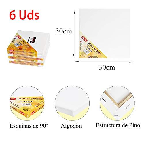 ALLPER Pack de 6 lienzos 30 x 30 cm de 100% algodón apto para óleo, acrílico y mixto, pre-estirado, color BLANCO. Libre de ácido.