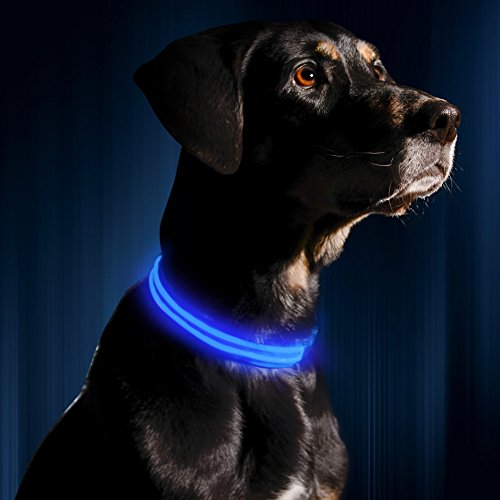 ILLUMISEEN LED Dog Collar USB Rechargeable – Bright & High Visibility Lighted Glow Collar for Pet Night Walking – Weatherproof, in 6 Colors & 6 Sizes (Blue Large)