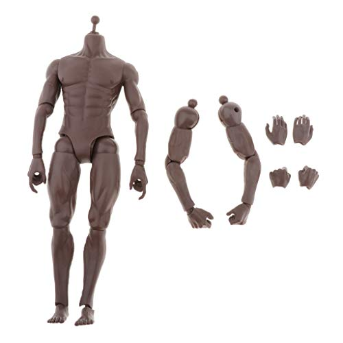 Bonarty 1/6 Scale Muscular Male Figure Body & Parts Fit for 12