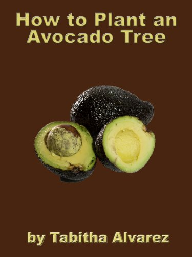 How to Plant an Avocado Tree (English Edition)