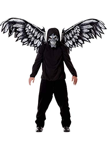 California Costumes Unisex-Adult's Fallen Angel Mask & Wings, Black, One Size
