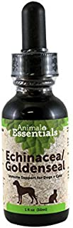 goldenseal for dogs