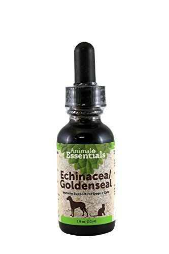 Top 10 best selling list for goldenseal supplement for dogs