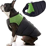 Gooby Padded Dog Vest - Green, X-Small - Zip Up Dog Jacket Coat with D Ring Leash - Small Dog Sweater with Zipper Closure - Dog Clothes for Small Dogs Girl or Boy for Indoor and Outdoor Use