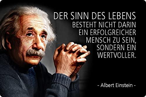 Blechschild 20x30cm gewölbt Der Sinn des Lebens besteht Zitat Einstein Spruch Sprüche Deko Geschenk Schild