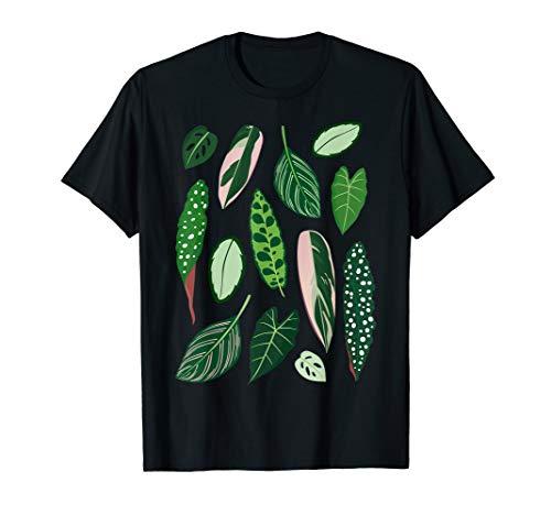 Illustration Zimmerpflanzen Calathea, Begonie und Alocasia T-Shirt