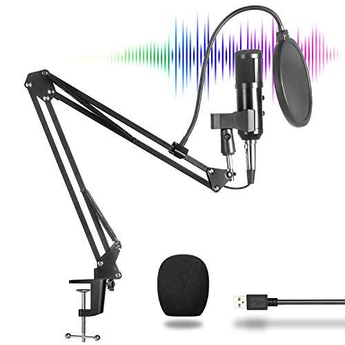 BM900 XLR a USB Kit de Micrófono da Condensador para Computadora, Patrón Polar de Cardioide, Botón de Echo, Conecta y Reproduce, Soporte de Brazo da Acero, Abrazadera de Mesa para Música Juego Podcast