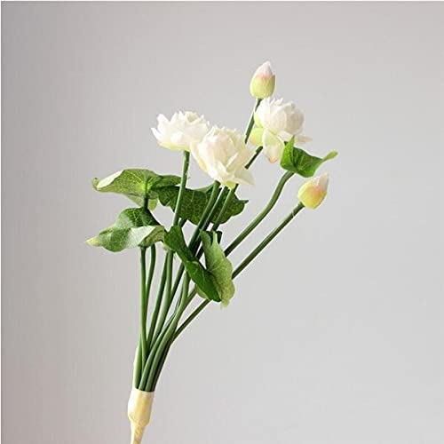 Artificial and Limited price Dried Flower 5Pcs Recommendation Lotus Fake 12.6