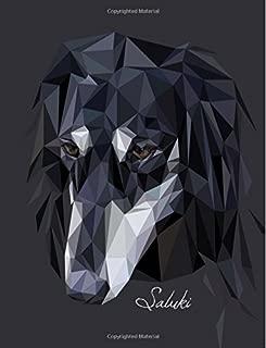 Best persian greyhound dog Reviews