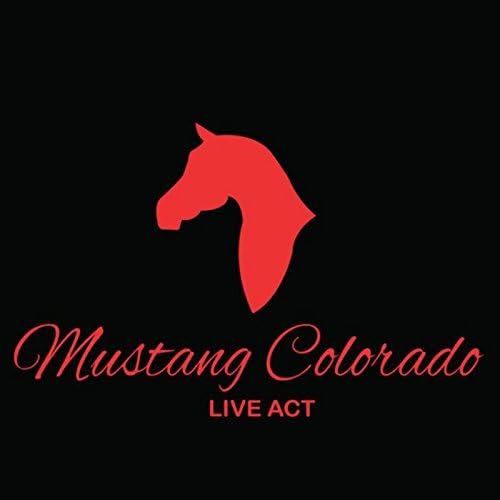 Mustang Colorado