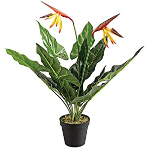 OakRidge Bird of Paradise Flower in Black Pot, Artificial Flowers Arrangement Centerpiece