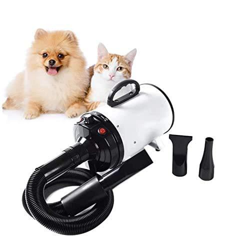 NEWTRY Secador de pelo para mascotas, con velocidad ajustable, de alta velocidad, para perros, gatos, secador de pelo profesional, 2000 W, reduce el ruido, aislamiento térmico (blanco)