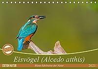 Eisvoegel (Alcedo atthis) - Edelsteine der Natur (Tischkalender 2021 DIN A5 quer): Eisvoegel - die kleinen bunten Gesellen in unserer Heimat (Monatskalender, 14 Seiten )