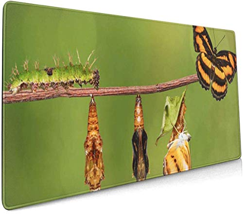 Tappetino per mouse da gioco multifunzione, base in gomma antiscivolo, tappetino per mouse per computer e giochi – ciclo di vita del colore Segeant Butterfly Athyma Nefte