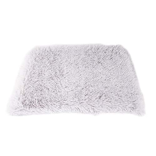 Kolylong® Super Softe Warme und Weiche Decke für Haustier Hundedecke Katzendecke Fleece-Decke/Tier Schlafdeck Überwurf für Hundebett Sofa und Couch Einfarbig Flauschige Hundedecke Katzen Decke